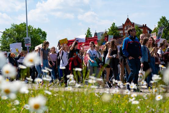 Fridays for Future Rostock